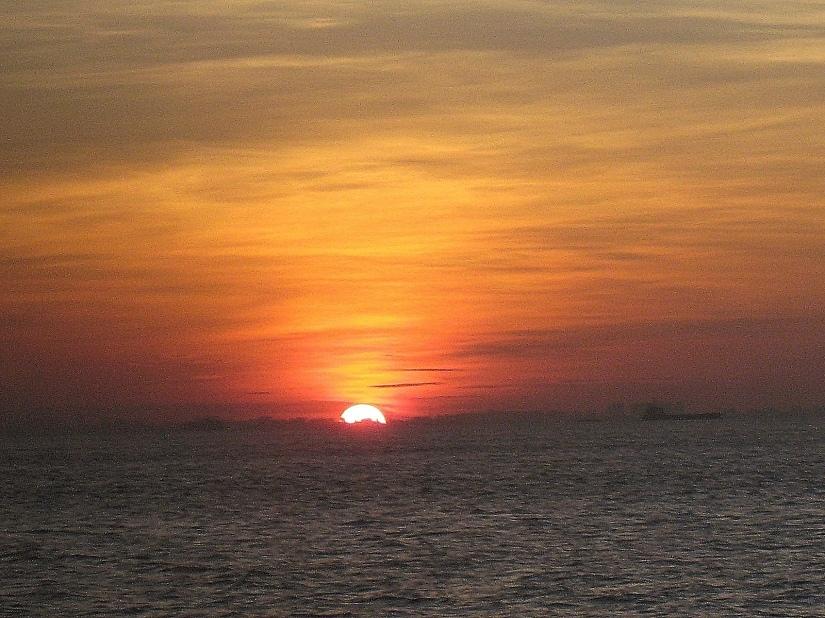 Farewell (Jan 2007)